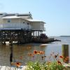 Run away for a few days. Leave the stress and pressure of the real world behind at the little Cove Cottage by the Sea in Cedar Key.